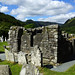 2019-06-07 06-22 Irland 817 Wicklow Mountains, Glendalough