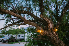 Canaan Meadows RV Park Big Spring TX