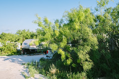 Canaan Meadows RV Park Big Spring TX - Shade RV Spaces