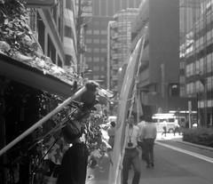 直射光 (a direct light) (Dinasty_Oomae) Tags: leicaiiia leica ライカiiia ライカ 白黒写真 白黒 monochrome blackandwhite blackwhite bw outdoor 東京都 東京 tokyo chiyodaku 千代田区 street