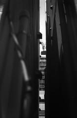 転調 (a modulation) (Dinasty_Oomae) Tags: leicaiiia leica ライカiiia ライカ 白黒写真 白黒 monochrome blackandwhite blackwhite bw outdoor 東京都 東京 tokyo chiyodaku 千代田区 street