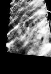 ちぢみ (contraction) (Dinasty_Oomae) Tags: leicaiiia leica ライカiiia ライカ 白黒写真 白黒 monochrome blackandwhite blackwhite bw outdoor 東京都 東京 tokyo chiyodaku 千代田区 street
