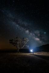 La encina gigante (Miguel Ángel Giménez) Tags: encina caravaca noche estrellas via lactea milky way murcia centrogalactico