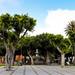 Plaza del Adelantado in San Cristóbal de La Laguna auf Teneriffa, Spanien