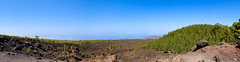 Panoramic view of a lava field in Teide National Park on Tenerife, Spain