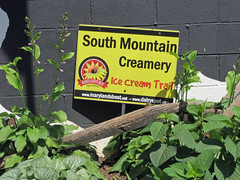South Mountain Creamery Sign. (dccradio) Tags: middletown md maryland frederickcounty outdoor outdoors outside southmountaincreamery june summer summertime wednesday afternoon wednesdayafternoon goodafternoon farm farming ag agriculture agricultural canon powershot elph 520hs sign words text icecreamtrail greenery leaf leaves wall