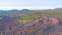 "Frozen lava and pine trees around the crater of Mount Teide on Tenerife, Spain (dronepicr) Tags: hike allgemein city wanderlust natur kanaren archipelago ""aerialviewtravel"" drone wandern mavic island stadt kanarische inseln teneriffa länderstädte insel geotagged landscape schönste strände luftbild strandurlaub bay spain sightseeing tenerife aerial ferien uav hiking wanderurlaub la gomera foto beach macaronesia strand travel urlaub luftbildreise ""birdseyeview"" canary islands vogelperspektive drohne holiday spanien ballermann"