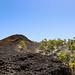 Volcanic landscape in Teide National Park on Tenerife, Spain