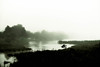Misty Evening at Edgartown Great Pond (John Piekos) Tags: xt3 marthasvineyard massachusetts water mist island edgartown fog greatpond vacation fujifilm sloughcove