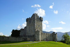 2019-06-07 06-22 Irland 638 Killarney, Ross Castle (Allie_Caulfield) Tags: foto photo image picture bild flickr high resolution hires jpg jpeg geotagged geo stockphoto cc sony alpha 77 sommer summer irland ireland eire killarney wanderung hike muckross house kerry lough leane lake trail walk