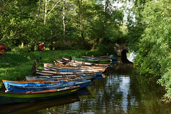 2019-06-07 06-22 Irland 635 Killarney (Allie_Caulfield) Tags: foto photo image picture bild flickr high resolution hires jpg jpeg geotagged geo stockphoto cc sony alpha 77 sommer summer irland ireland eire killarney wanderung hike muckross house kerry lough leane lake trail walk