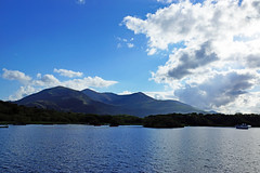2019-06-07 06-22 Irland 630 Killarney (Allie_Caulfield) Tags: foto photo image picture bild flickr high resolution hires jpg jpeg geotagged geo stockphoto cc sony alpha 77 sommer summer irland ireland eire killarney wanderung hike muckross house kerry lough leane lake trail walk