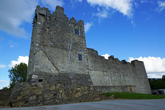 2019-06-07 06-22 Irland 629 Killarney, Ross Castle (Allie_Caulfield) Tags: foto photo image picture bild flickr high resolution hires jpg jpeg geotagged geo stockphoto cc sony alpha 77 sommer summer irland ireland eire killarney wanderung hike muckross house kerry lough leane lake trail walk