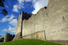 2019-06-07 06-22 Irland 633 Killarney, Ross Castle (Allie_Caulfield) Tags: foto photo image picture bild flickr high resolution hires jpg jpeg geotagged geo stockphoto cc sony alpha 77 sommer summer irland ireland eire killarney wanderung hike muckross house kerry lough leane lake trail walk