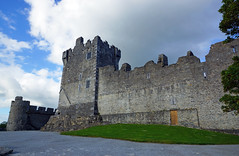2019-06-07 06-22 Irland 631 Killarney, Ross Castle (Allie_Caulfield) Tags: foto photo image picture bild flickr high resolution hires jpg jpeg geotagged geo stockphoto cc sony alpha 77 sommer summer irland ireland eire killarney wanderung hike muckross house kerry lough leane lake trail walk