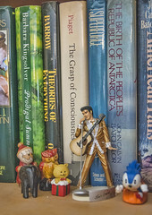 concert on a shelf (peter.clark) Tags: elvis king shelf books