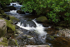 2019-06-07 06-22 Irland 603 Killarney, Muckross Lake Walk, Torc Waterfall (Allie_Caulfield) Tags: foto photo image picture bild flickr high resolution hires jpg jpeg geotagged geo stockphoto cc sony alpha 77 sommer summer irland ireland eire killarney wanderung hike muckross house kerry lough leane lake trail walk wasserfall water fall