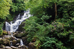 2019-06-07 06-22 Irland 604 Killarney, Muckross Lake Walk, Torc Waterfall (Allie_Caulfield) Tags: foto photo image picture bild flickr high resolution hires jpg jpeg geotagged geo stockphoto cc sony alpha 77 sommer summer irland ireland eire killarney wanderung hike muckross house kerry lough leane lake trail walk wasserfall water fall