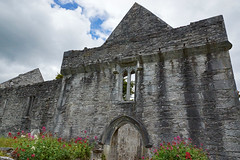 2019-06-07 06-22 Irland 584 Killarney, Muckross Lake Walk, Muckross Abbey (Allie_Caulfield) Tags: foto photo image picture bild flickr high resolution hires jpg jpeg geotagged geo stockphoto cc sony alpha 77 sommer summer irland ireland eire killarney wanderung hike muckross house kerry lough leane lake trail walk abbey friary abtei ruine ruin klosterruine kloster