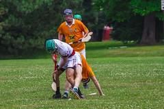 IMG_7744j (indygaa) Tags: indy gaa hurling pub league indiana indianapolis sliotar irish sports ireland winning