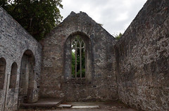 2019-06-07 06-22 Irland 587 Killarney, Muckross Lake Walk, Muckross Abbey (Allie_Caulfield) Tags: foto photo image picture bild flickr high resolution hires jpg jpeg geotagged geo stockphoto cc sony alpha 77 sommer summer irland ireland eire killarney wanderung hike muckross house kerry lough leane lake trail walk abbey friary abtei ruine ruin klosterruine kloster