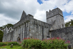 2019-06-07 06-22 Irland 583 Killarney, Muckross Lake Walk, Muckross Abbey (Allie_Caulfield) Tags: foto photo image picture bild flickr high resolution hires jpg jpeg geotagged geo stockphoto cc sony alpha 77 sommer summer irland ireland eire killarney wanderung hike muckross house kerry lough leane lake trail walk abbey friary abtei ruine ruin klosterruine kloster