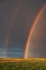 Double Rainbow vertical (Christy Turner Photography) Tags: rainbow rainbows storm stormchaser yyc calgary
