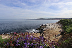 La Jolla Cove, California (russ david) Tags: la jolla cove california landscape pacific ocean ca april 2019