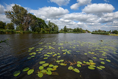 Kromme Mijdrecht (Julysha) Tags: krommemijdrecht river 2019 thenetherlands summer clouds sky july d850 nikkor1635vr acr waterlilies dehoef amstel vrouwenakker