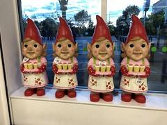 Photo of Garden gnomes