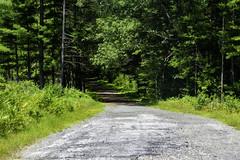 Quabbin Reservoir (renrus06) Tags: massachusetts centralmass quabbinreservoir quabbin scene scenery water drinkingwater hiking biking trail hotdays summerdays summer sunshiny weekendwalks