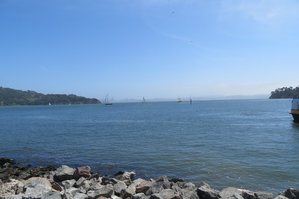 Biking in Tiburon