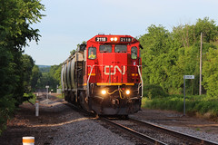 """""""He could go all the way"""" (view2share) Tags: cn2118 c408 ge generalelectric dash8 barronsub 519 l519 cn519 cnl519 summer evening engine westbound westernwisconsin rring rr railway railroad railroading railroads rail rails roadtrip railroaders restoration trains track transportation train tracks transport trackage trees travel freight freighttrain freightcar freightcars fracsand frac sand sandmining coveredhopper coveredhoppercar deansauvola june292019 june2019 june 2019 class1 branch branchline local barroncounty wisconsin wi canadiannational cn"""