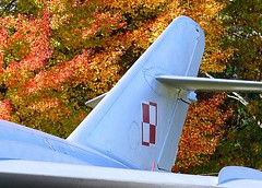 "MiG-17 Fresco 3 • <a style=""font-size:0.8em;"" href=""http://www.flickr.com/photos/81723459@N04/48227894856/"" target=""_blank"">View on Flickr</a>"