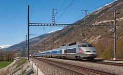TGV 110 (maurizio messa) Tags: tgv tgv9261 tgv9263 vallese wallis switzerland svizzera nikond90 mau bahn ferrovia treni trains railway railroad lyria