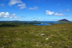 2019-06-07 06-22 Irland 417 Connemara, Letterfrack, Diamond Hill Walk
