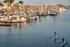 siblings standup paddling (nocklebeast) Tags: msladapter minoltamdleicamadapter boat boats ocean santacruz harbor sea ridiculouslens ca usa hartbleitiltadapter arsatc80mmf28 ridiculouss1100128 instagram