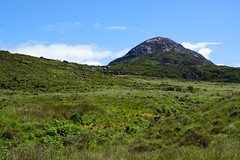 2019-06-07 06-22 Irland 415 Connemara, Letterfrack, Diamond Hill Walk (Allie_Caulfield) Tags: foto photo image picture bild flickr high resolution hires jpg jpeg geotagged geo stockphoto cc sony alpha 77 sommer summer irland ireland eire connemara country side landscape wanderung hike natural park preserve twelve bens upper lower diamond trail