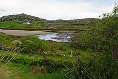 2019-06-07 06-22 Irland 391 Connemara, Culfin