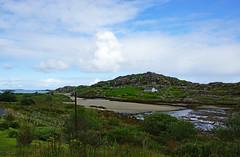 2019-06-07 06-22 Irland 390 Connemara, Culfin