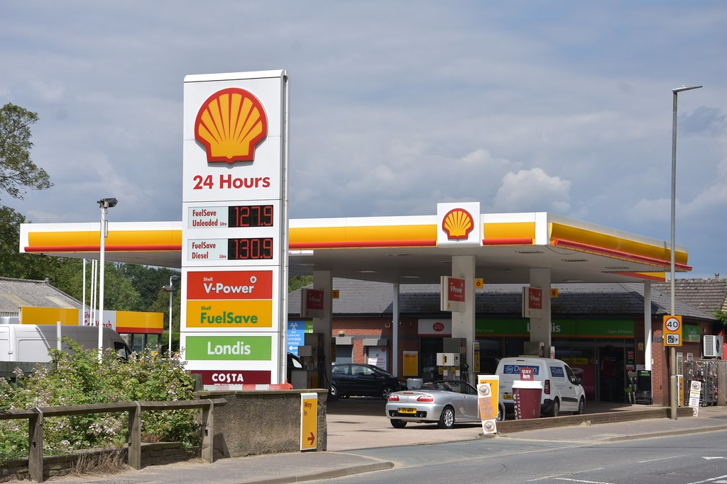 The World's most recently posted photos of filling and shell