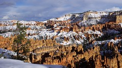 After the Storm (Mary Ann Whitney-Hall) Tags: bryce canyon national park utah snow