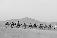 Outbound (wyrd bið ful aræd) Tags: desert camels animals travel sand black white people africa climate environment explore