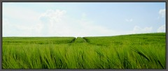 Halb und Halb (tingel79) Tags: ngc landschaft landscape himmel sky wolken world germany day natur nature sonya6500 sony photographie photography blauundgrün blueandgreen
