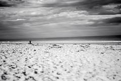 "Beach <a style=""margin-left:10px; font-size:0.8em;"" href=""http://www.flickr.com/photos/22746979@N05/48229431557/"" target=""_blank"">@flickr</a>"