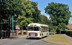 SVF 896G, Eastern Counties Bristol RE896, Carlton Colville, 7th. July 2019. (Crewcastrian) Tags: lowestoft carltoncolville buses transport eastangliantransportmuseum easterncountiesomnibuscompany preservation bristol re ecw svf896g re896