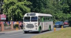 OFW 806, Lincolnshire Road Car Co. Bristol SC, Carlton Colville, 7th. July 2019. (Crewcastrian) Tags: lowestoft carltoncolville transport buses eastangliantransportmuseum preservation bristol sc ecw ofw806 2609