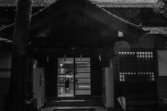 Kyudo in Omiya Hachimangu (uaru.amphiacantoides) Tags: japan japanese kyudo dojo budo