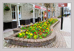 Flower Planters, Atholl Road, Pitlochry, Scotland UK (Stuart Smith_) Tags: 7dmarkii athollroadpitlochry britain british canoneos7dmarkii colour explore flickrgeotaggers flora floral flowers gbr geo:lat=5670315833 geo:lon=373438333 geotagged gps greatbritain httpstudiaphotos mapped olddart pitlochry planters scotland scots scottish stuartsmith stuartsmithstudiaphotos studiaphotos uk unitedkingdom wwwstudiaphotos