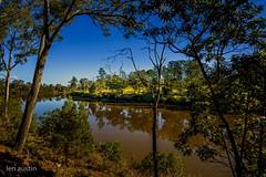 RIVER REFLECTIONS (len.austin) Tags: afternoon australia australianplants brisbane gums jindalee landscape outdoor plants reflections river subtropics sunlight winter